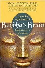 Buddha's Brain 1st (first) edition Text Only