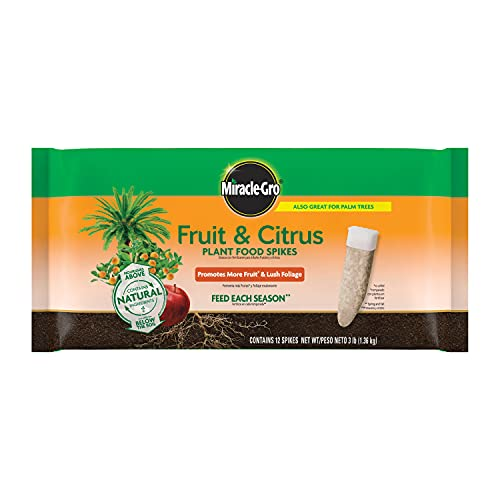 Miracle-Gro Fruit & Citrus Plant Food Spikes, 12 Spikes