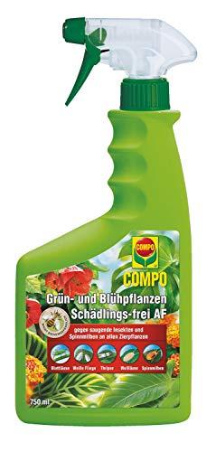 COMPO Grün- und Blühpflanzen Schädlings-frei AF, Bekämpfung von saugenden Insekten und Spinnmilben an allen Zierpflanzen, 750 ml
