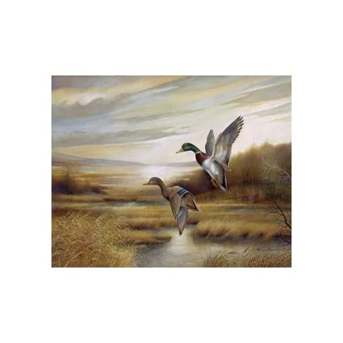 BACKWATER WOODIES by Richard Plasschaert 10x13 FRAMED PRINT Wood Ducks Landing