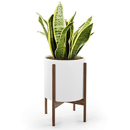 Mid Century Plant Stand with Pot with Drainage - Matte White Ceramic Indoor Planter with Stand Made of Walnut - Modern 10 inch Planter - Large Plant Pot for Plants - Sturdy Plant Stand NOT Adjustable