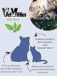 VetVittles.com Herbes Naturelles Urinaires et Vitamin pour Chiens et Chats 6.25oz #2