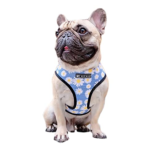 Pet Harness, No Pull Dog Harness and Leash Set Adjustable Breathable Vest Harness French Bulldog Outdoor Chest Strap for Puppy Small Medium Dogs (M)