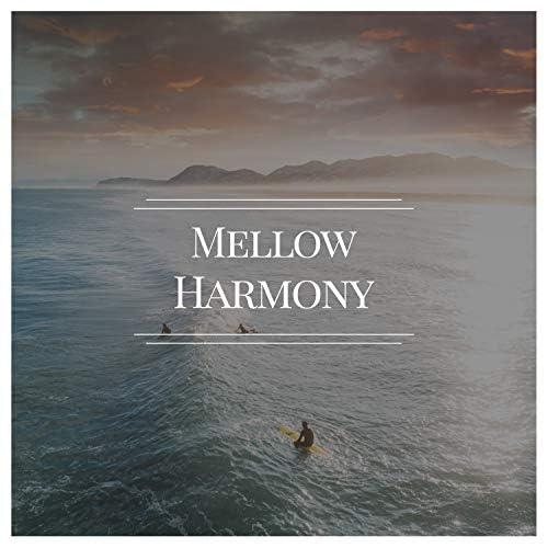 Meditation Ambience & Yoga Music