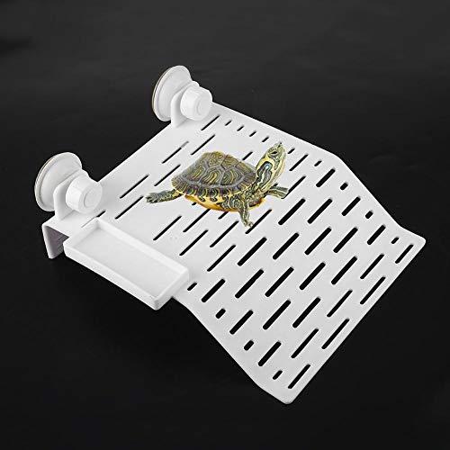Pssopp Acuario Plataforma de Tortuga Reptil Hábitat Isla Flotante Acrílico Tortuga de Descanso Terraza con Ventosa para Reptiles y Anfibios(L)