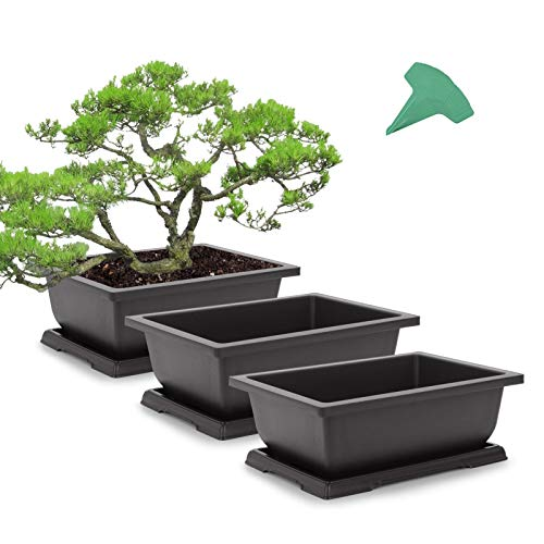 GROWNEER 3 Packs 11 Inches Bonsai Training Pots with 15 Pcs Plant Labels, Plastic Bonsai Plants Growing Pot for Garden, Yard, Office, Living Room, Balcony and More