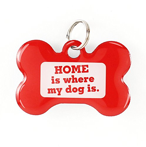 Dynotag Web Enabled Super Pet ID Smart Tag with DynoIQ & Lifetime Recovery Service. Play Series: Bone (Home is Where My Dog is)