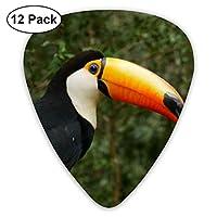 自然の森のオオハシ鳥エレクトリックギターとアコースティックギターに適したエレクトリックギターの絶妙な12ピースピック。