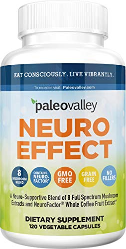 Paleovalley: NeuroEffect - Advanced Wellness and Immune Supplement - 120 Veggie Capsules - Natural Support for Focus, Memory Stress Relief, and Energy - Flavorless - 8 Organic Mushroom Blend
