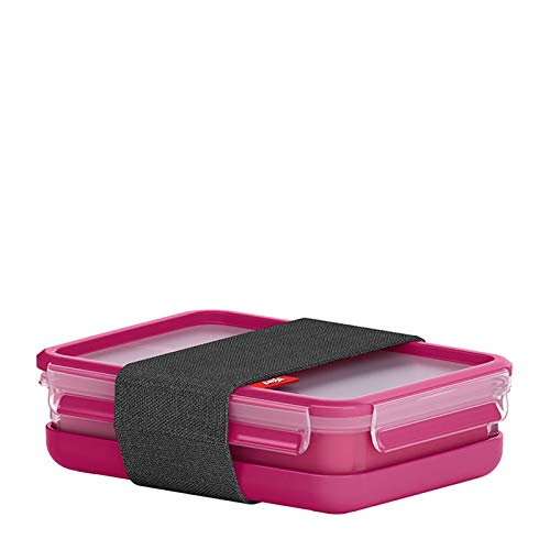 Emsa F1070500 Lunchbox, Kunststoff