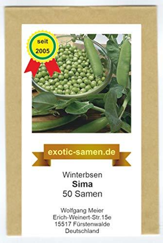 Wintererbse - Sima - 50 Samen