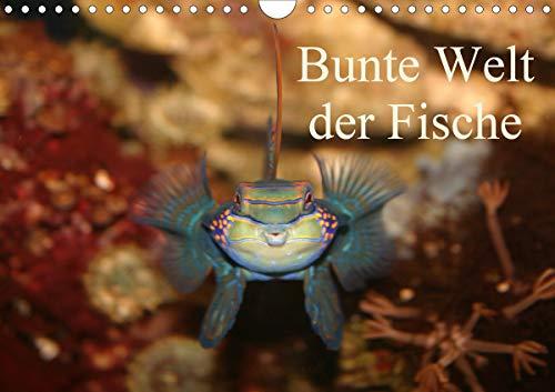 Bunte Welt der Fische (Wandkalender 2021 DIN A4 quer)