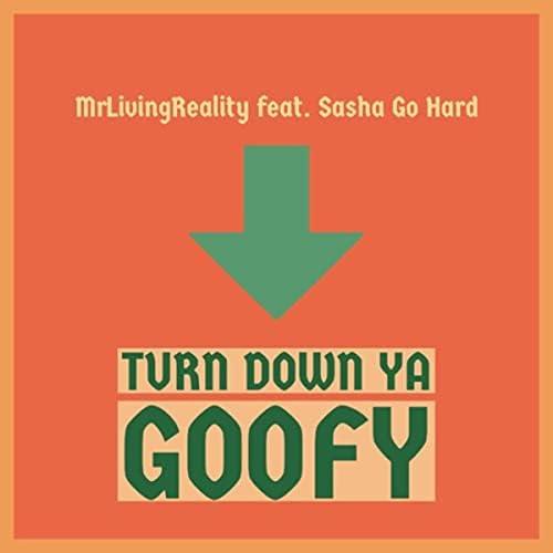 Mrlivingreality feat. Sasha Go Hard