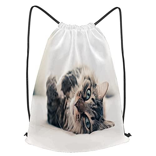 fudin Impermeable Bolsa de Cuerdas Saco de Gimnasio gato gris acostado en la cama Deporte Mochila para Playa Viaje Natación