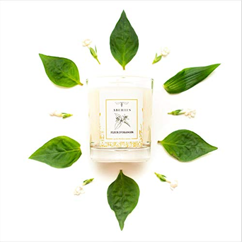 Abeillus Fragrance - Bougie Parfumée Naturelle 100% Végétale - Jardin du Monde - Jardin méditerranéen - Fleur d'oranger - Parfum Doux et Reposant - Fabriquée en France - 45h de Combustion - 180g