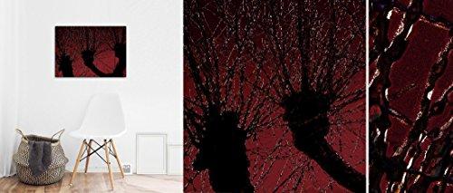 Willow Trees | Red |, Fine Art Fotoabzug 50 x 40 cm - Fotografik – ungerahmt -