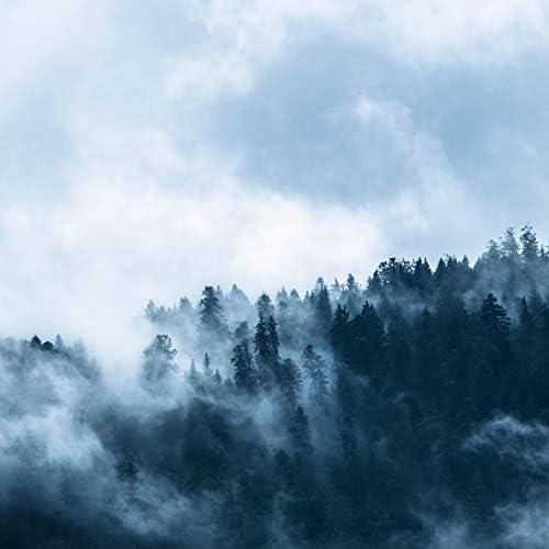 Sounds Of Rain & Thunder Storms, Deep Sleep Meditation & The White Noise Zen & Meditation Sound Lab