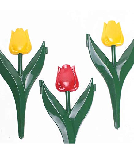 Astuceo 12 Tulipes décor Bordure