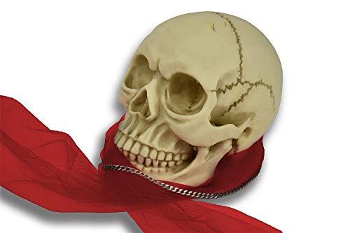 Vinsani Réplica realista de tamaño real del cráneo gótico - adorno de decoración de Halloween [blanco]