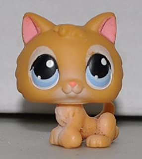 Kitten #47 (Orange, Blue Eyes) - Littlest Pet Shop (Retired) Collector Toy - LPS Collectible Replacement Single Figure - Loose (OOP Out of Package & Print)