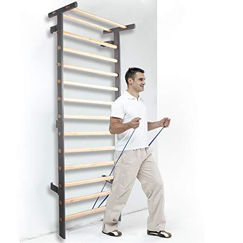 CCLIFE Sprossenwand Turnwand Kletterwand Klimmzugstange Klettergerüst Erwachsener Kinder Indoor Holz Eisen