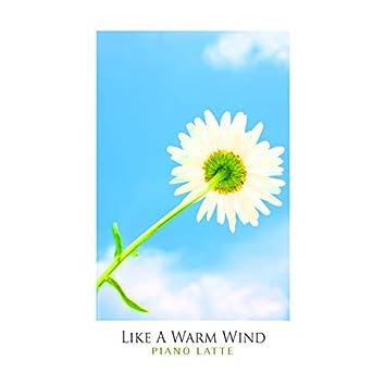 Like A Warm Wind