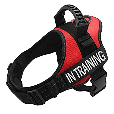TOPPLE Servcie dog In Training Vest Harness-Reflective Vest wih Comfortable Handle for Small Dogs,Purchase Come with 2 Reflective IN TRAINING +Service Dog Velcro Patches-Size S