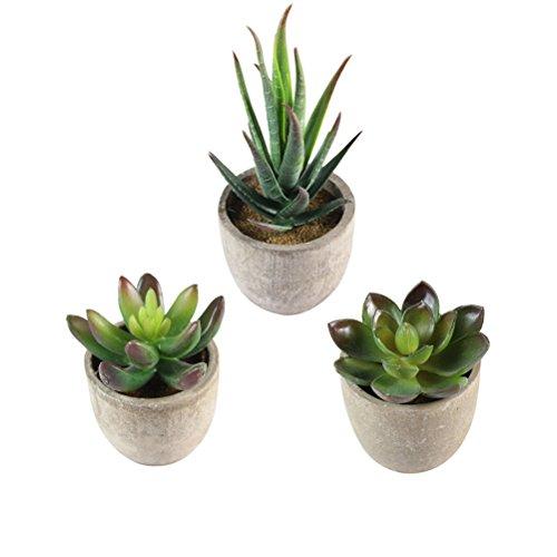 OUNONA 3 pezzi Faux Sukkulente Bonsai Cactus vaso per fiori piante piante piante piante piante grasse con vasi decorazione tavolo casa balcone ufficio decorazione