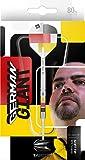 Target Darts Gabriel Clemens 80 80% Wolfram Softdarts-Set (19 g), schwarz, gelb, rot und weiß
