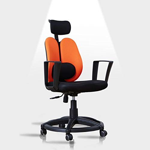 Livinia Ergonomic Office Chair, Lumbar Support Breathable Mesh Design with Padded Seat Cushion for Kids
