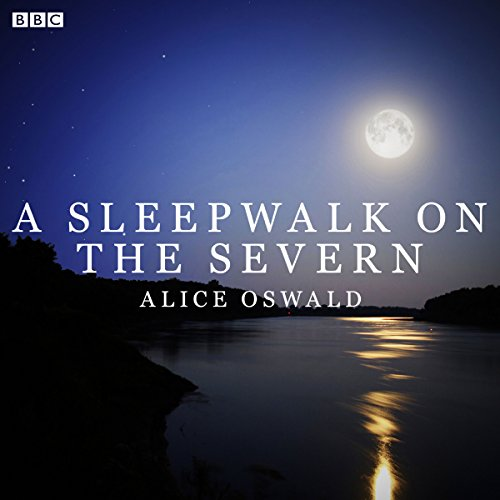 A Sleepwalk on the Severn audiobook cover art