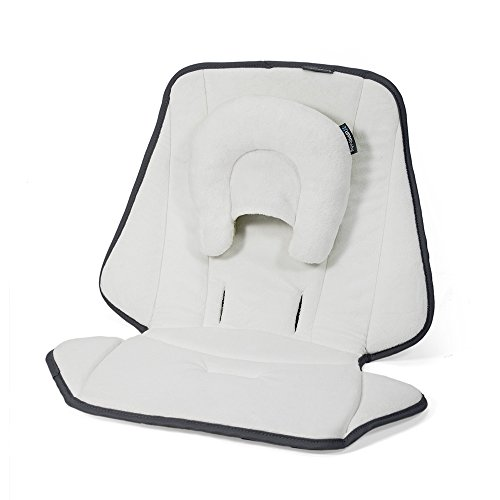 UPPAbaby Infant SnugSeat Mississippi