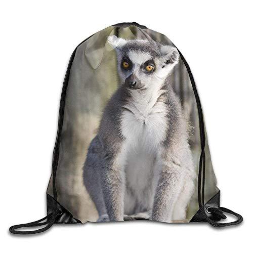 PmseK Rucksack, Bedruckt, mit Kordelzug, HG417gtj I Love Ring-Tailed Lemurs Durable Drawstring Backpack Sport Sackpack for Men & Women School Travel Bag