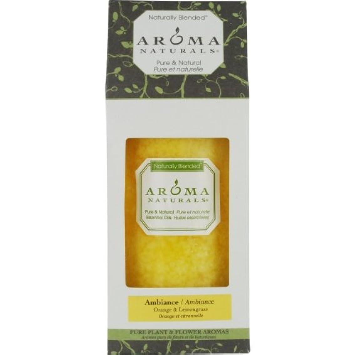 抑止する聖人野なアロマナチュラルズ オーセンティック アロマテラピー キャンドル - アンビアンス(オレンジ&レモングラス) (2.75x5) inch並行輸入品