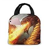 OIVLA Flame Fire Dragon Cool Falming - Bolsa de almuerzo con aislamiento térmico para picnic al aire libre