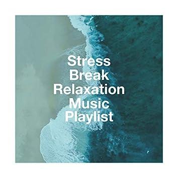 Stress Break Relaxation Music Playlist