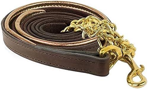 Perri's Cuir métallique en cuir rembourré Laisse avec chaîne, 6-Feet, Havana platine