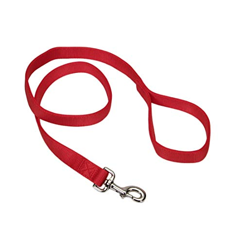 Coastal Pet Double-Ply Nylon Dog Leash, Red Color | 1' Wide by 6-Feet Long |