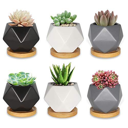 Ceramic Succulent Pots Set of 6, Farielyn-X 3 Inch Small Succulent Planters, Mini Flower Planter Pot, Geometric Plant Pots, Cactus Planter Pots with Drainage and Bamboo Tray (Plants NOT Included)