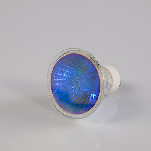 Showking Deckenlampe 230V / 35W / Sockel GU - 10/25° / blau - farbiges Ersatz - Leuchtmittel für Deckenleuchten