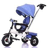 Triciclo for niños, Giro del Asiento de Bicicleta Triciclo for niños Vehículos for niños Inflable Gratuito Edad de Uso: 8 Meses a 5 años A++ ( Color : Light Blue )