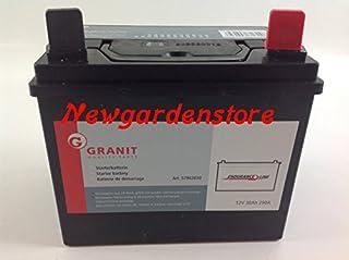Newgardenstore Batería de arranque eléctrica para tractor cortacésped, 12 V, 30 Ah, potencia 290 A