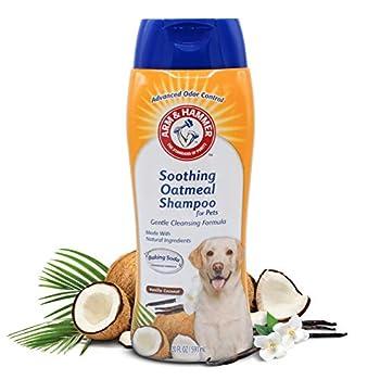Arm & Hammer Oatmeal Shampoo for Dogs   Best Dog Shampoo for Dogs with Dry and Itchy Skin   Arm & Hammer Baking Soda Enhanced Dog Shampoo Formula Vanilla Coconut Scent 16 oz