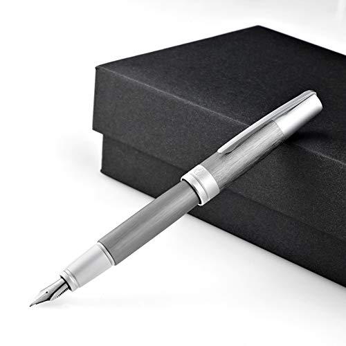 Picasso 961 - Estuche para pluma estilográfica de aleación de aluminio, diseño de Georg Simmel y puente, bolígrafo de caligrafía fino Nibib, bolígrafos vintage para colección/negocios/Firma/tudente/oficina (gris): Amazon.es: Oficina y papelería