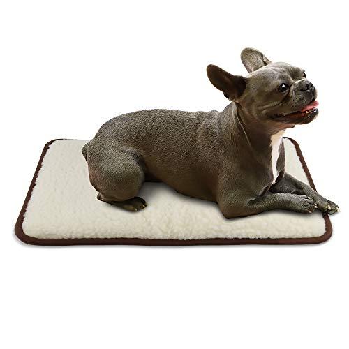LUGUNO® Hundekissen 60 x 40 cm braun für kleine Hunde (Chihuahua) Abwaschbar, Transportbox & Outdoor, Weich Flauschig