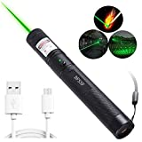 DFSSF USB Charging Green Light Pointer Torch, Demonstration Projector Pen, Handheld Flashlight for Camping Biking Hiking Outdoor.