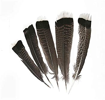 eagle feather jewelry