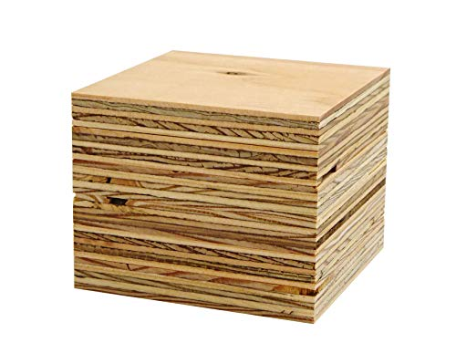 針葉樹合板(構造用合板) 厚み12mm 高耐水性 JAS F☆☆☆☆ 板材・コンパネ・合板 (90×90mm 6枚セット)