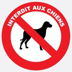 Adhésif interdit aux chiens diam 100mm