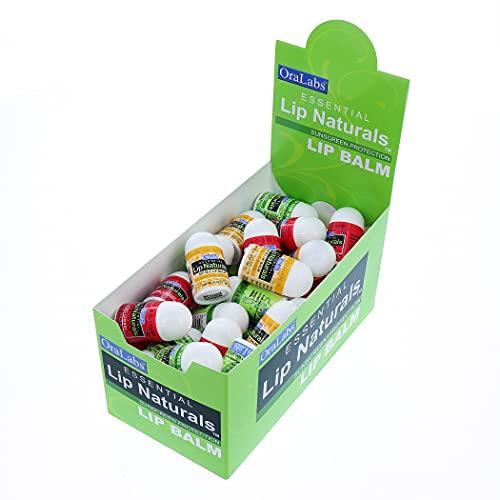 Lip Naturals | Assorted Mini Lip Balm Sticks - 3 Flavors with Sunscreen Protection and Vitamin E | 50 Count Display Box - Includes Bing Cherry (SPF-15), Tea Tree Mint (SPF-15), and Vanilla Bean (SPF-15)